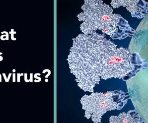What is Corona Virus