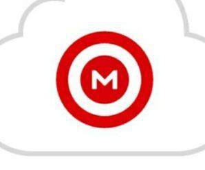 Mega.nz 50GB 100 Account